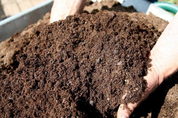 all-about-composting